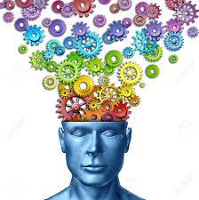 regenboog hersenen