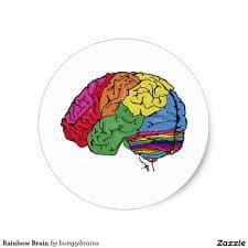 regenboog hersenen01