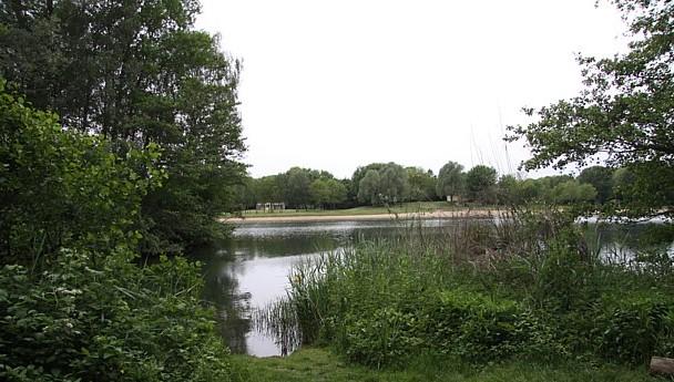 Zwemmen in het prachtige Wylerbergmeer